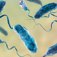 El agua y la ciencia, héroes de todas las epidemias