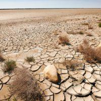 Las CCAA piden incluir la desertificación como objetivo prioritario de la UE
