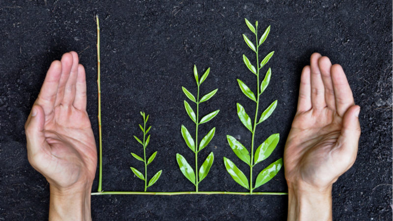 El 80% de los grandes inversores incluyen la sostenibilidad en sus planes