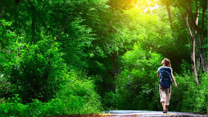 Guía para volver a los espacios naturales con seguridad y responsabilidad