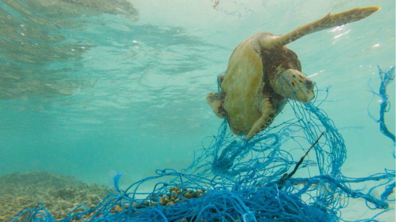 Buceo y superación se aúnan para limpiar los fondos marinos