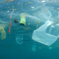 Plásticos y residuos como oportunidad