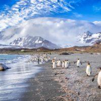El Polo Sur se calentó tres veces más rápido que el resto del mundo