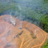 Los incendios amenazan la Amazonía brasileña tras dispararse en julio