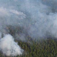 Calor extremo: alerta roja por incendios en Siberia