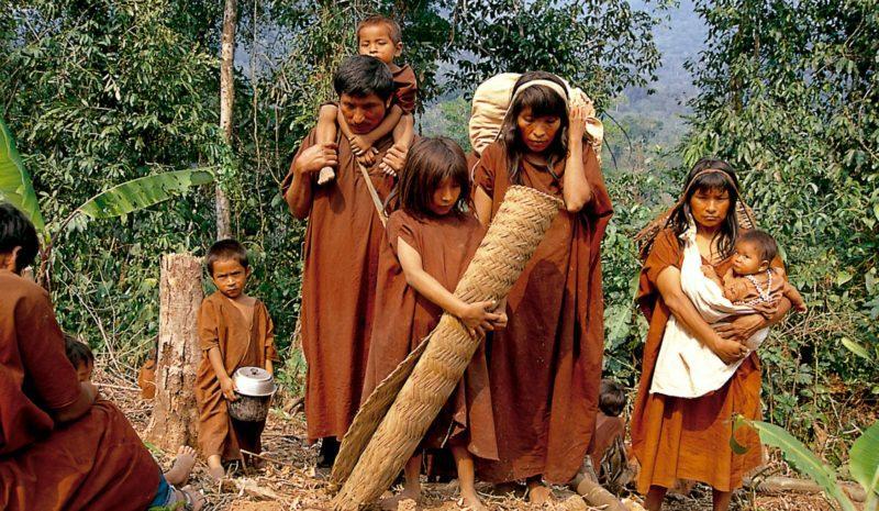 El Covid-19 arrasa a los indígenas de Brasil con la inacción de Bolsonaro