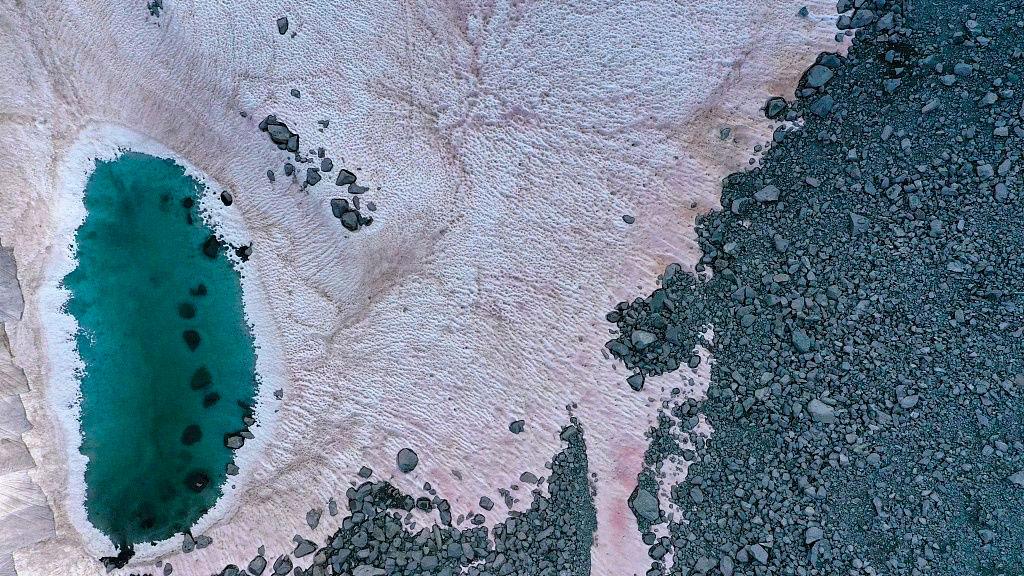 La nieve de los Alpes se vuelve rosa