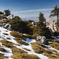 La Sierra de las Nieves: el Parque Nacional que faltaba