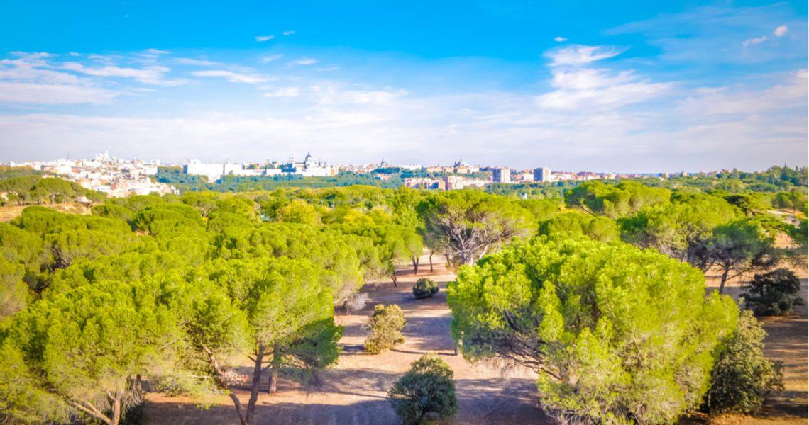 Madrid lanza un concurso para construir un gran Bosque Metropolitano