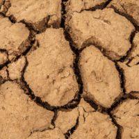 La Organización Meteorológica Mundial augura un futuro de calor y sequías