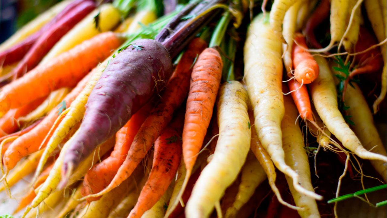 Sabias Que Las Zanahorias No Siempre Fueron Naranjas Amarillo, amarillo delicado, anaranjado, color chocolate, color madera, color naranja, color naranja intenso, color zanahoria, colores verde. siempre fueron naranjas