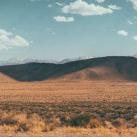 Biocostras de bacterias para salvar los suelos de la desertificación