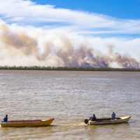 Arde el delta del río Paraná por la prolongada sequía
