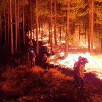 Alerta máxima de incendios en Canarias, un año después de Tamadaba