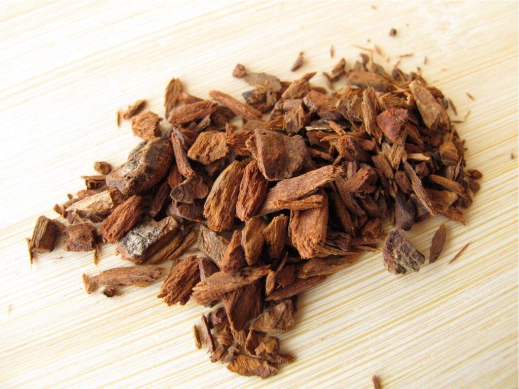 Corteza de árbol de la quina, el remedio tradicional contra la malaria y el único conocido hasta la invención en el siglo XX de las variedades sintéticas de la quinina. | FOTO: Heike Rau