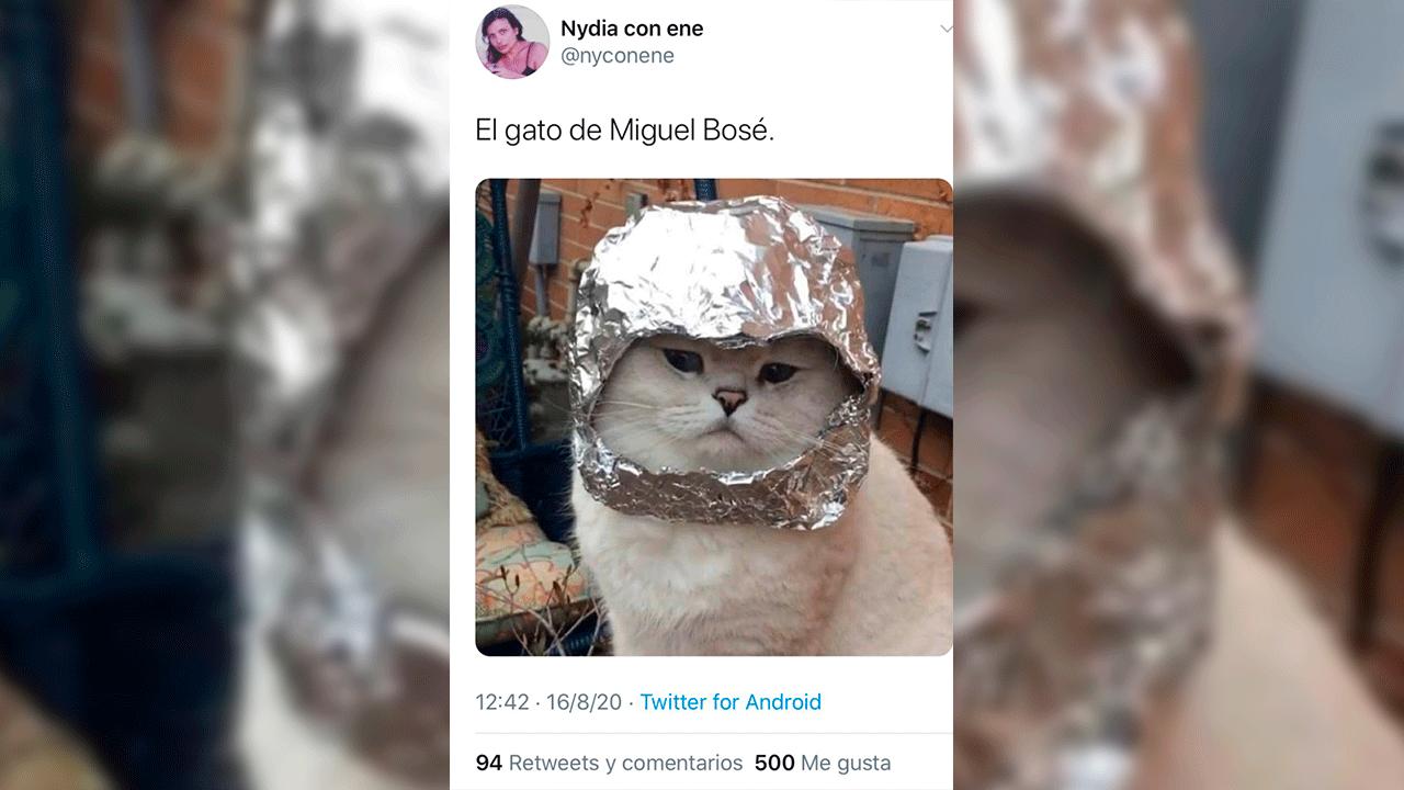 El gato de Miguel Bosé