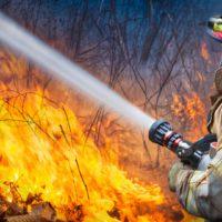 Incendios forestales, ¿cuánto sabes sobre ellos?
