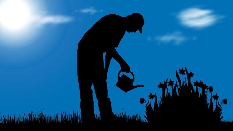 El jardinero 'ful'