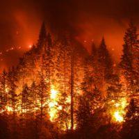 El cambio climático prorroga seis semanas la temporada de incendios