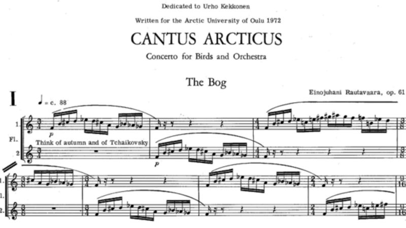 'Cantus Arcticus' de Rautavaara, el canto de los pájaros hecho música