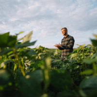 """Un lustro de """"pago verde"""" ha mejorado la biodiversidad y la calidad del suelo"""