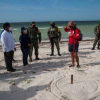 El ejército mexicano vigila nidos de tortuga en Yucatán