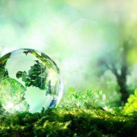 La ONU advierte que la naturaleza está contraatacando