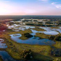 El Pantanal, el mayor humedal del mundo, se seca