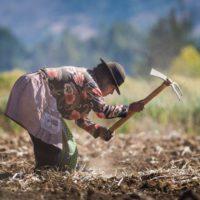 España financiará proyectos de desarrollo agrícola en Latinoamérica y África