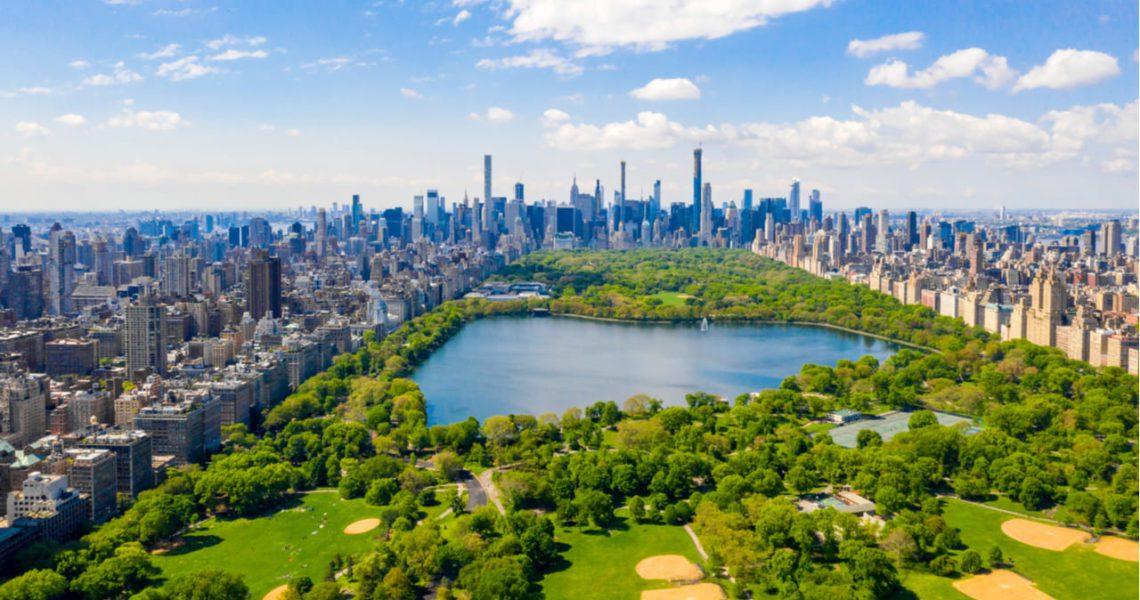 Los bosques, clave para afrontar los desafíos hídricos urbanos