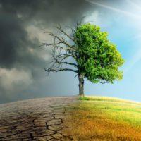 'Una acción por la naturaleza', la campaña global más urgente