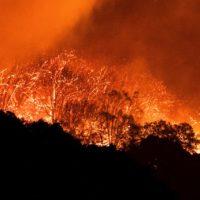 Microbios infecciosos están presentes en el humo de los incendios forestales