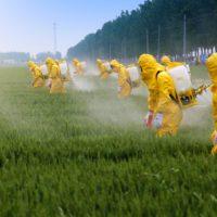 Las empresas europeas exportan pesticidas prohibidos en la UE