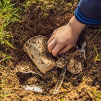 Plásticos biodegradables, una solución ecológica con problemas de etiquetado