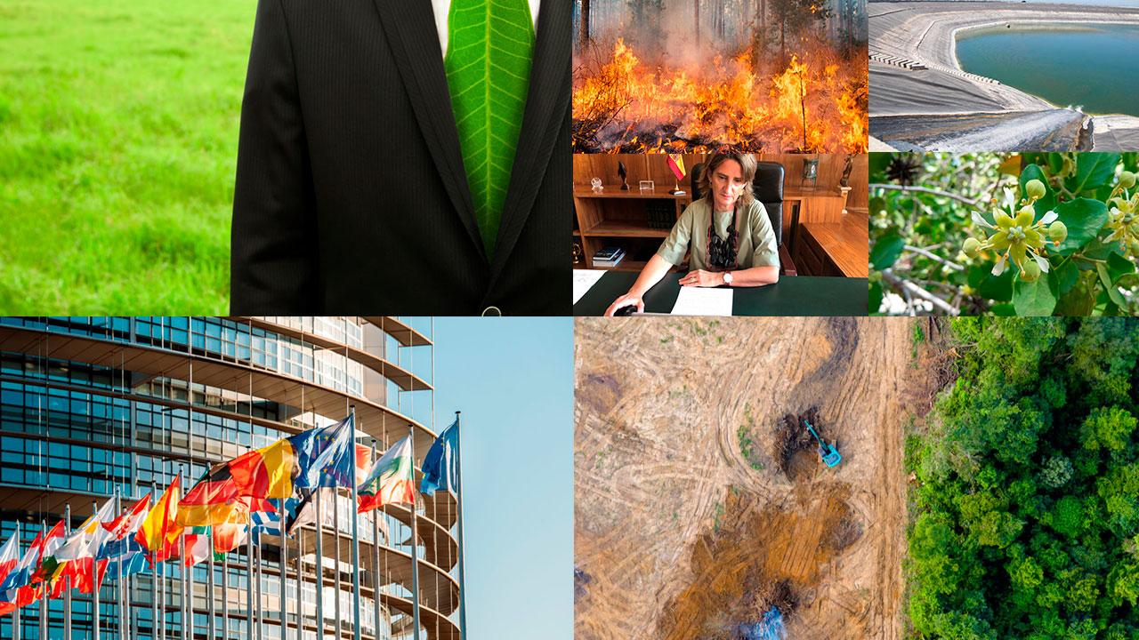 Más de 150 líderes empresariales piden a Europa más ambición climática