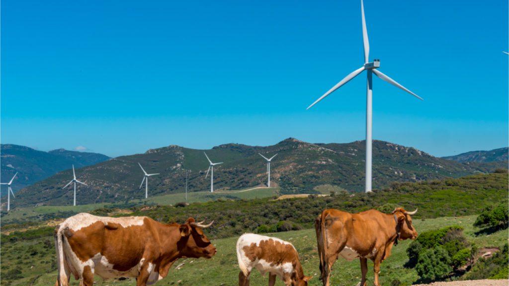 IDAE renovables