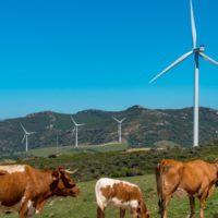 El IDAE financia con 181 millones proyectos innovadores de renovables