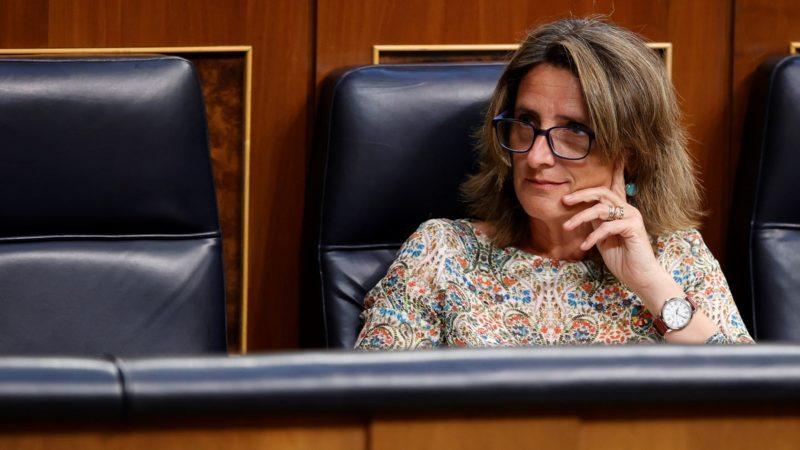 Ribera copresidirá un órgano de la OIT para impulsar el empleo verde