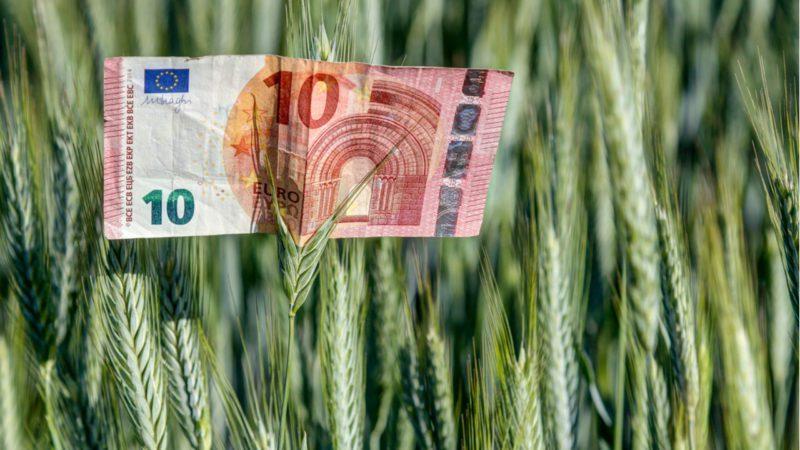 La transición ecológica elevará el PIB un 0,7% anual hasta 2035