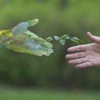 """Guterres: """"Hacer las paces con la naturaleza es la tarea más importante del siglo"""""""