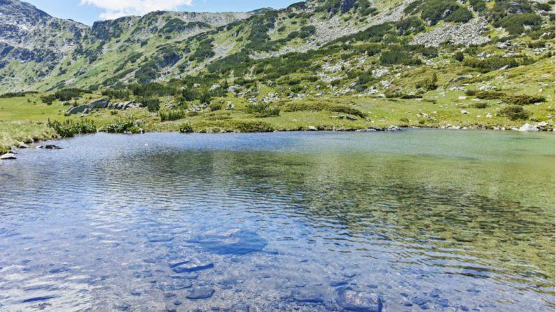La vida en los lagos, amenazada por el calentamiento