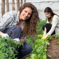 Agricultura impulsará medidas para favorecer el relevo generacional