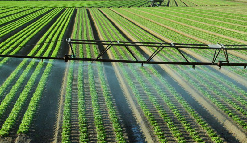Estados Unidos propone a Latinoamérica una estrategia agrícola común