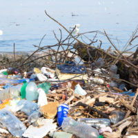 El 81% de los hábitats de la UE se encuentra en mal estado