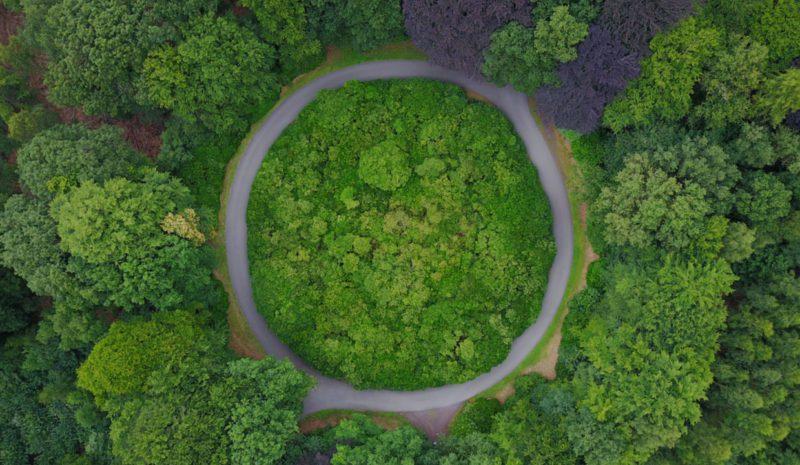 Las instituciones financieras son clave para impulsar la economía circular