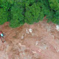 El Gobierno presenta la hoja de ruta para reconectar ecosistemas