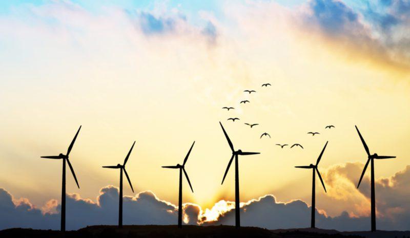 Apostar por la energía eólica podría crear 450.000 empleos en 10 años