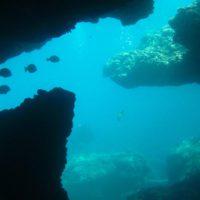 Los expertos piden una moratoria sobre la minería en fondos marinos