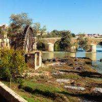 La cuenca del Guadalquivir desciende al 29,4%