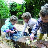 Cómo renaturalizar la escuela
